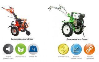 Какой мотоблок лучше: дизельный или бензиновый?
